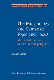 image of The Morphology and Syntax of Topic and Focus